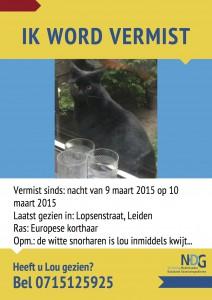 Poster_Lou