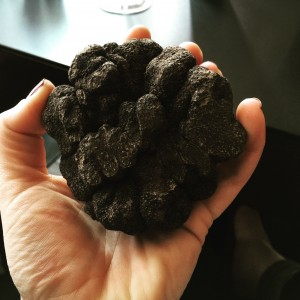 truffels1
